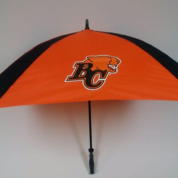 BC Lions Umbrellab